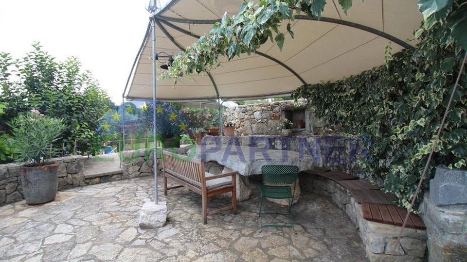 Malinska-Krk, two exclusive stone houses with swimming pool and large olive grove