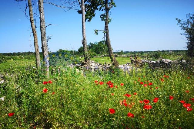Građevinsko zemljište sa predivnim panoramskim pogledom, Kringa-Pinezići