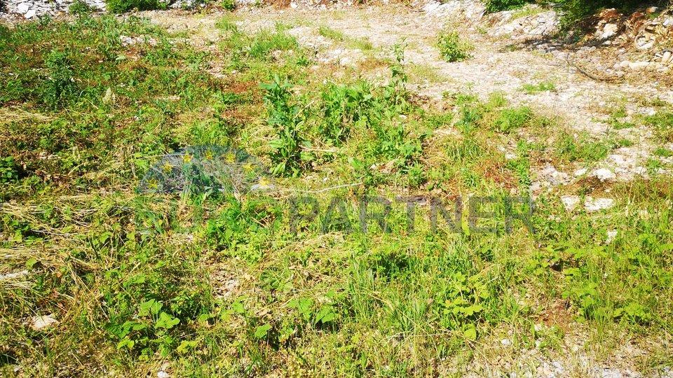 Zemljište građevinsko-poljoprivredno, 3704m2, Kringa-Pinezić
