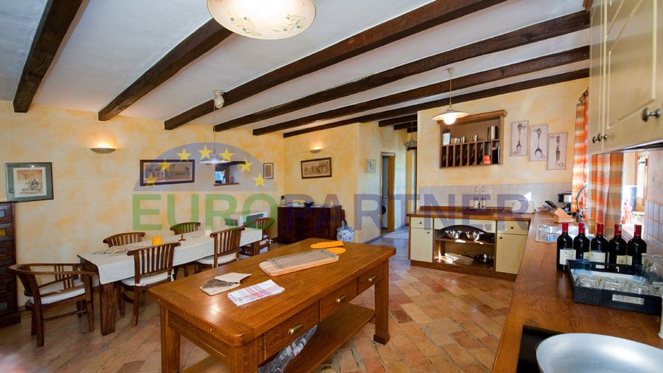 Detached stone villa with pool and garden of 6500m2, Tinjan
