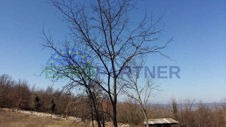 ODLIČNA PRILIKA-Građevinsko zemljište na mirnoj lokaciji površine 4248m2, Karojba
