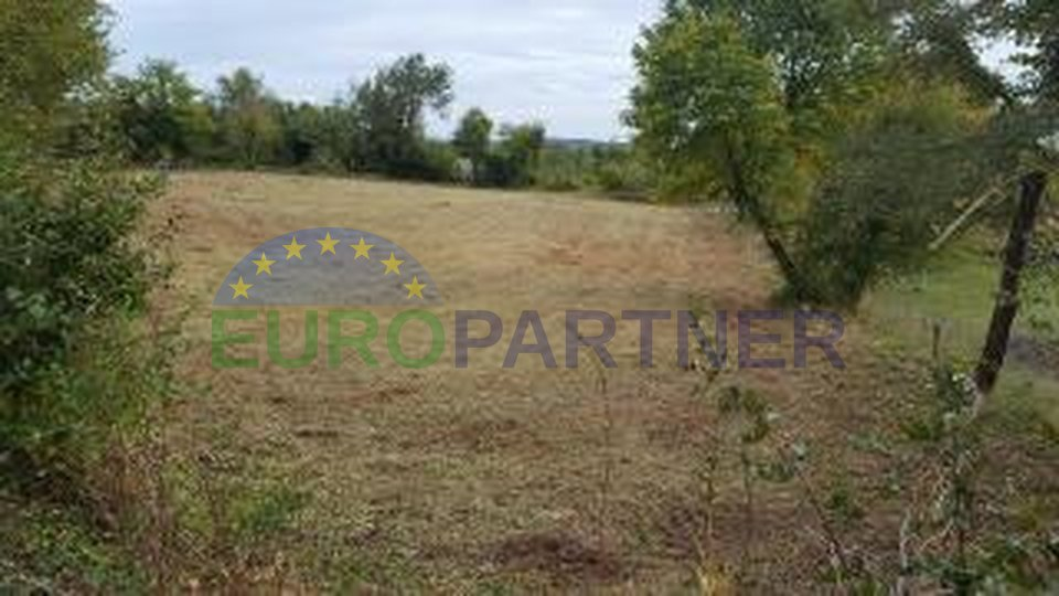 Attractive building lands in the center of Istria, near Žminj